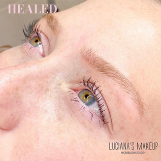 Healed LuvBrows Microblading