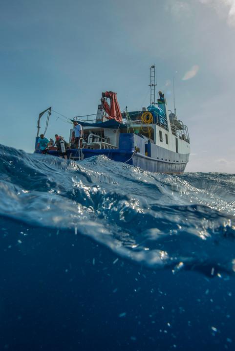 Jaluit Atoll 2013