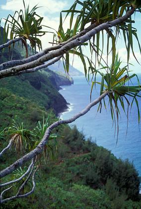 Nepai Coast, Kauai