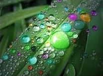 raindrop_therapy_colored_rain_drops_larg