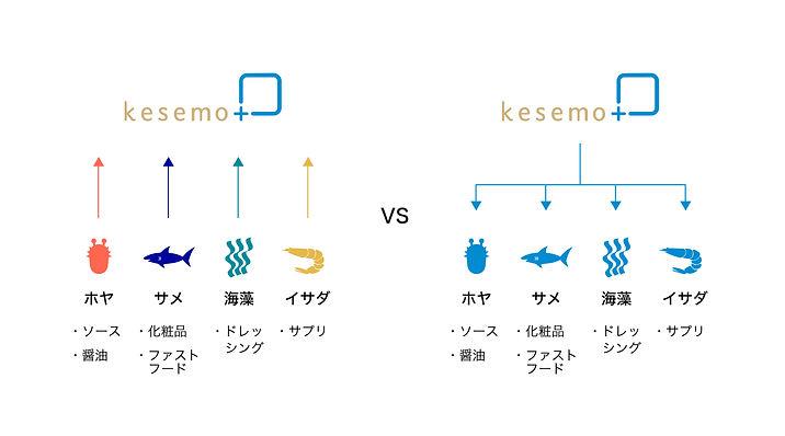 kesemo_c-01.jpg