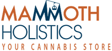 mammoth holistics logo.png