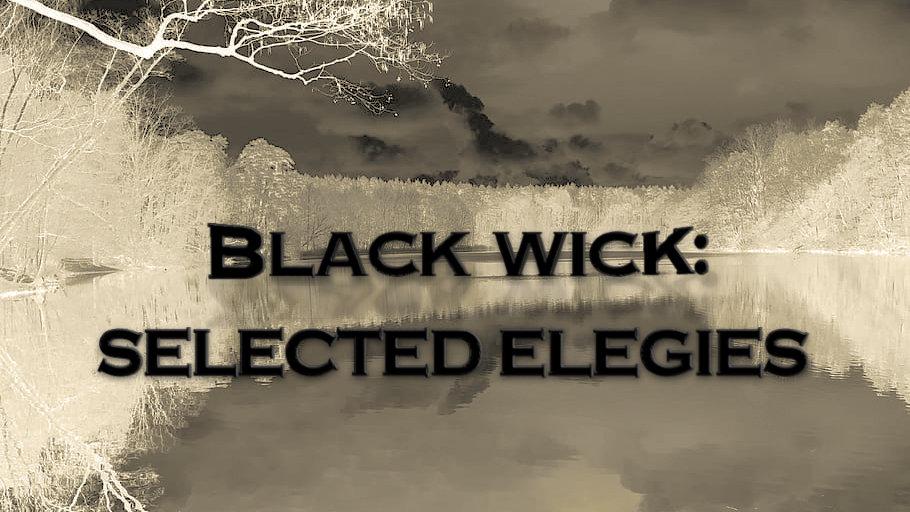 Black Wick: Selected Elegies