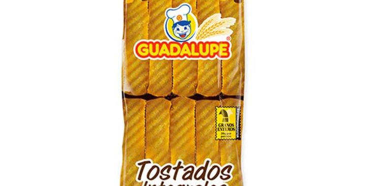 Tostados Guadalupe Integrales X10 Und