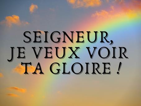 SEIGNEUR, JE VEUX VOIR TA GLOIRE !