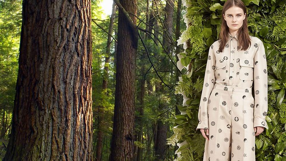 """""""Campanha de 2016 da CanopyStyle que visa acabar com o desmatamento de florestas antigas e ameaçadas de extinção para fabricar raiom/viscose e modal."""""""