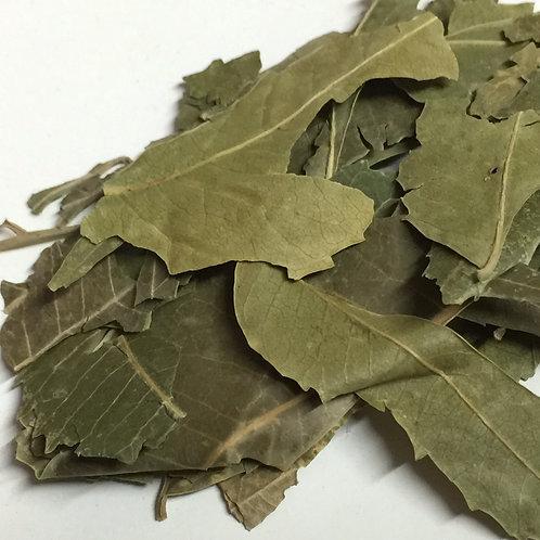 Neem Leaf - 1 oz