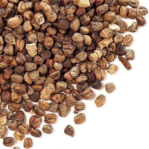 Cardamom Seeds - 1 oz