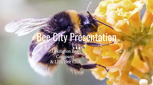 Bee City Presentation (copy; shareable v