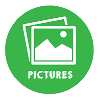 10---Green-Icon---Pictures.png