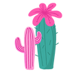 Joyce---Cacti-1.png