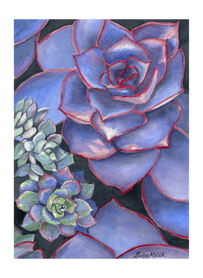 Blue Succulents_1
