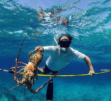 spearfishing bahamas.jpg