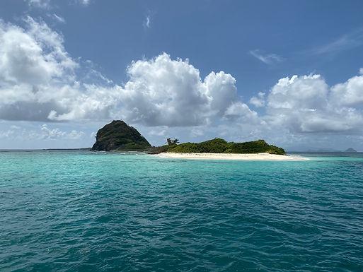 Deserted Beach Grenadines.jpg