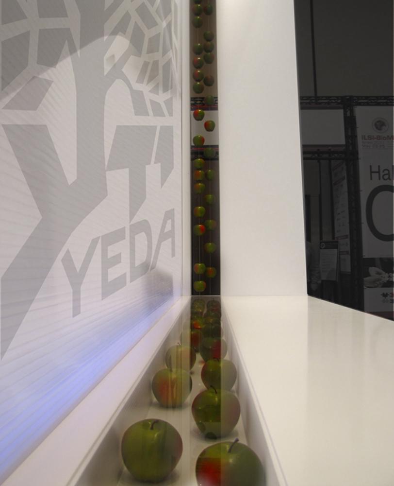 client: Yeda @ RM STUDIO