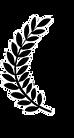 9-96213_laurel-wreath-for-film-festival-