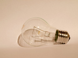 bulb specialist