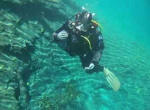 diving_img_2.jpg