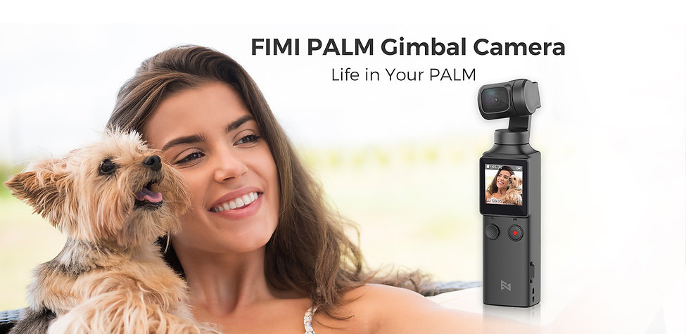palm-1 (1).jpg