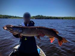 Master Angler Pike
