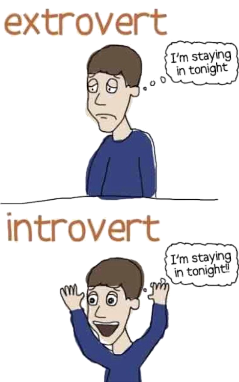 The different between an introvert and an extrovert - CM Learning - introverted networking