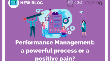 Performance Management - a powerful process or a positive pain?