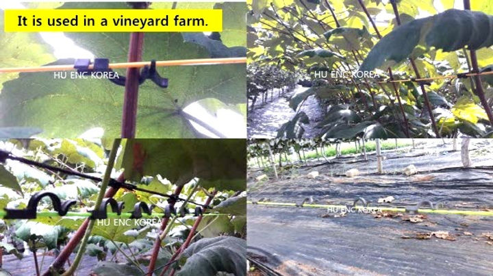 USED%20IN%20A%20VINEYARD%20FARM_edited.j