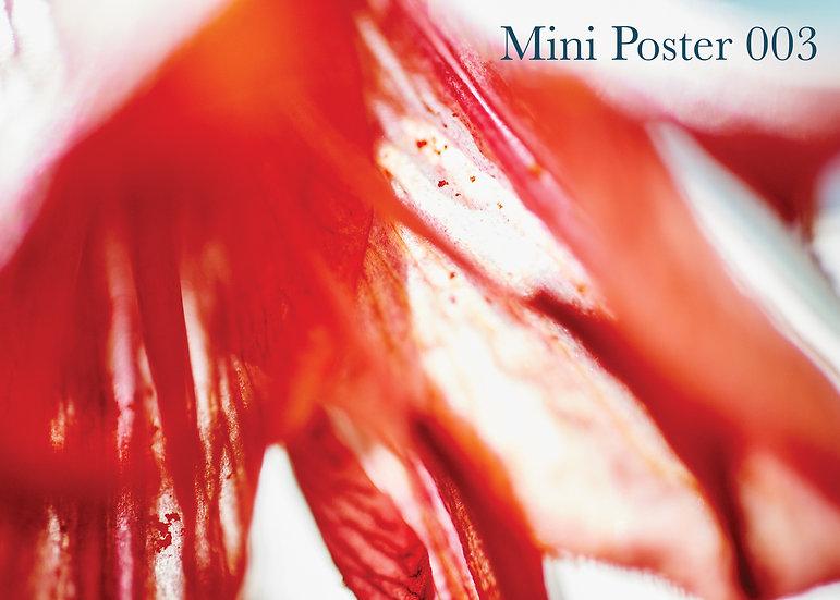 MINI POSTER 003