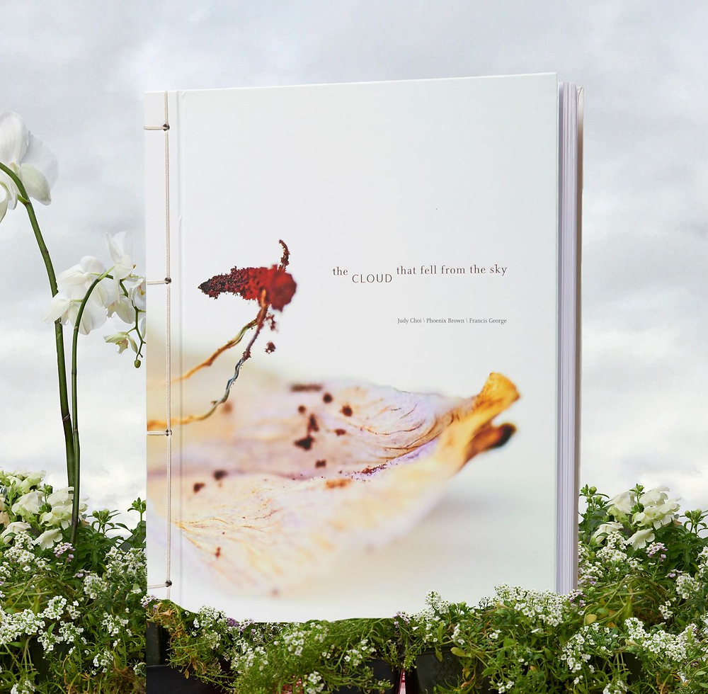 Photo of Writer and Poet Judy Choi swinging on orchid by French photographer Francis George award winning book