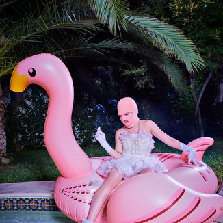 THE FLAMINGO & THE CIGARETTE