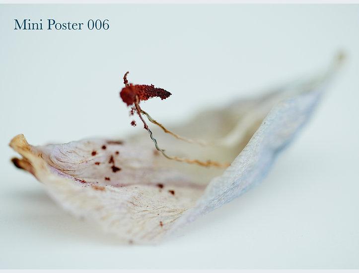 MINI POSTER 006