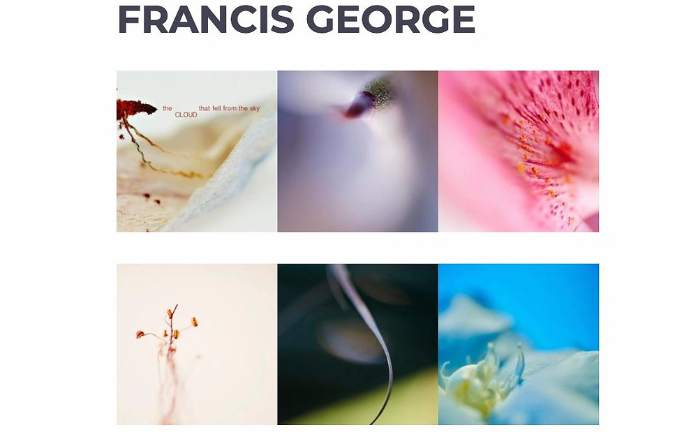 Francis George French Photographer feature in L.A. Arts Magazine BFLY Karol Pabon