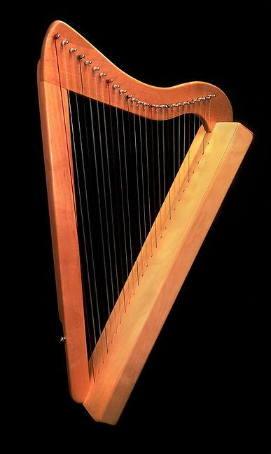 IMG_1887  Lapharp 3 Harpsicle.jpg