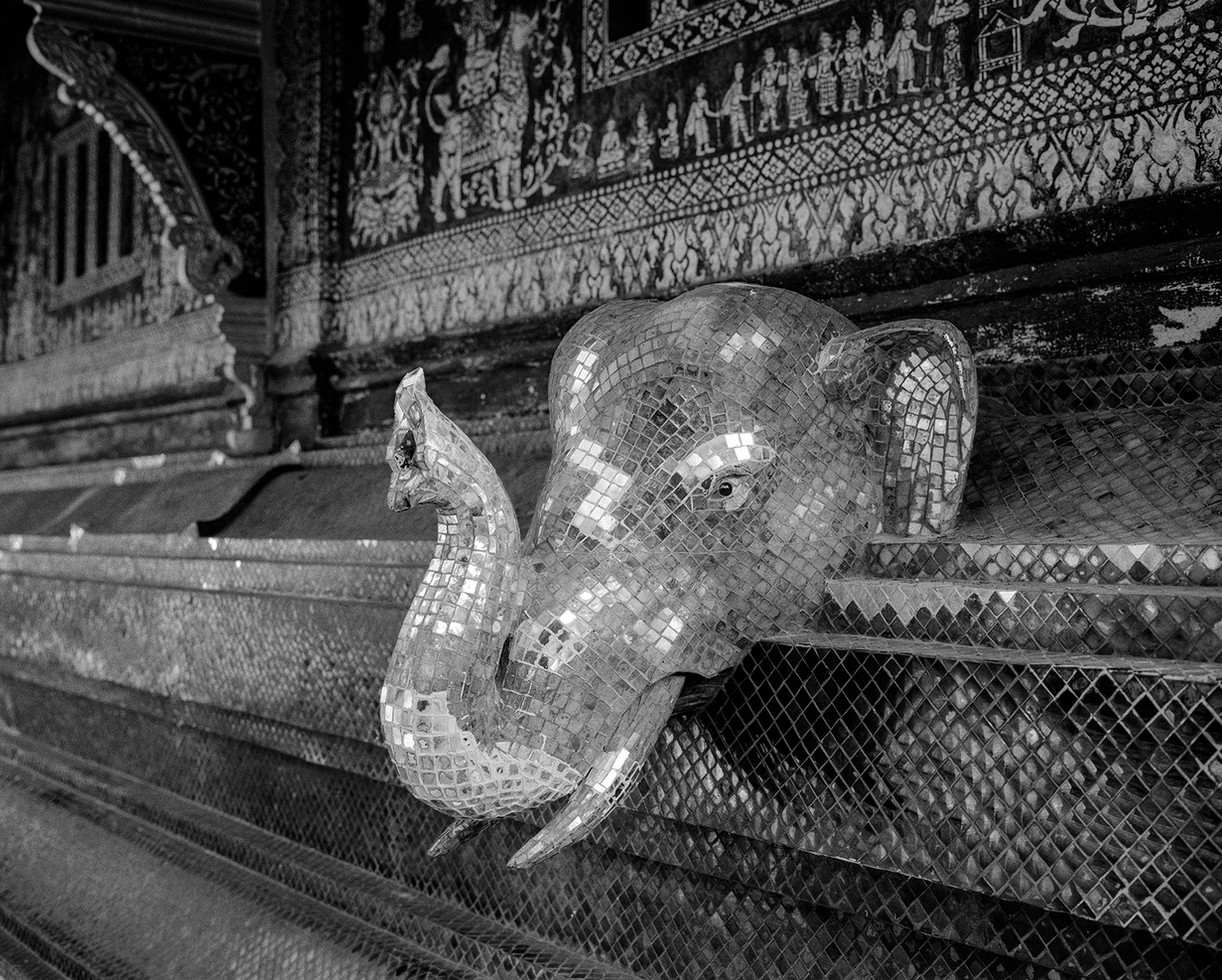 Elephant Head, Laos