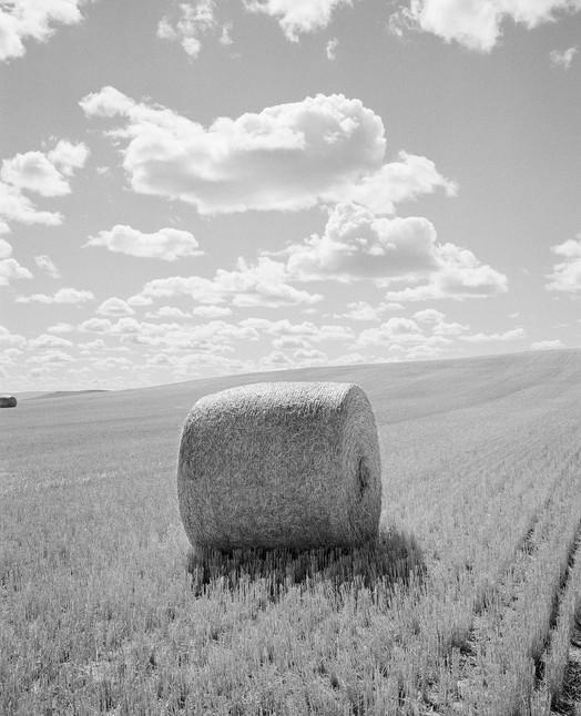 Hay Roll