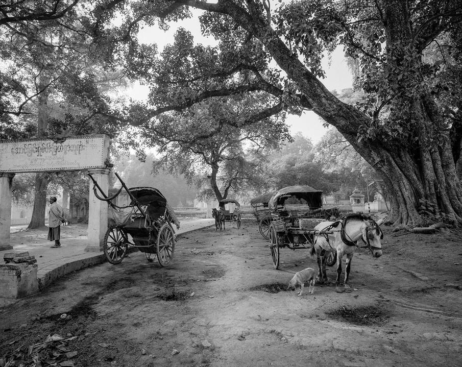 Horsecarts, Amarapura Myanmar