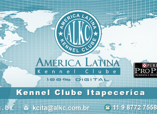 Kennel Clube Itapecerica