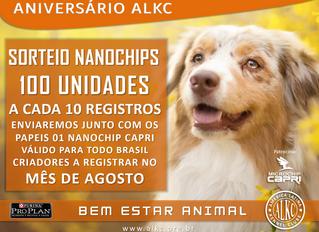 Promoção Nanochip