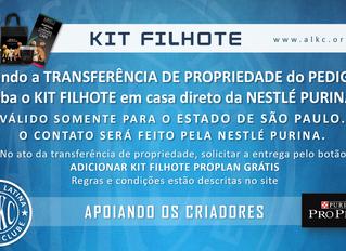 KIT FILHOTE EM CASA