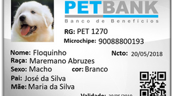 PETBANK incia suas atividades no Brasil