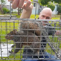 EPMSeanSquirrel.jpg