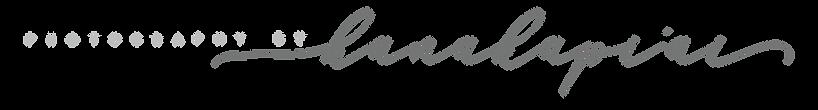 PBH logos.png
