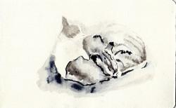 drawings (47)