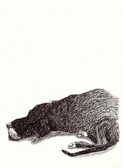 drawings (192)