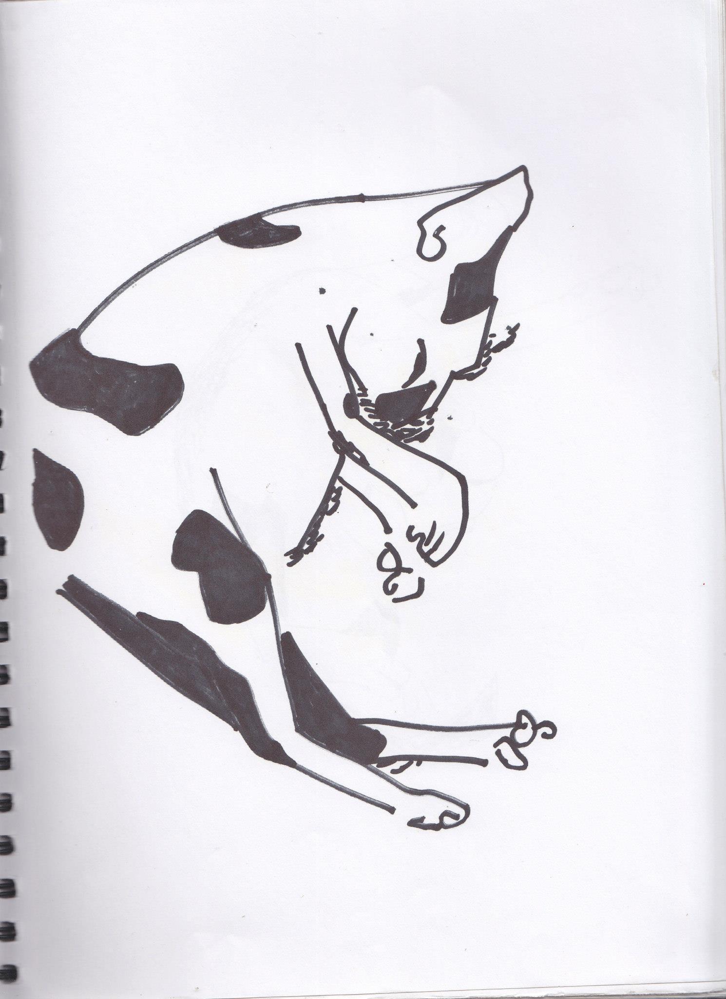 drawings (165)