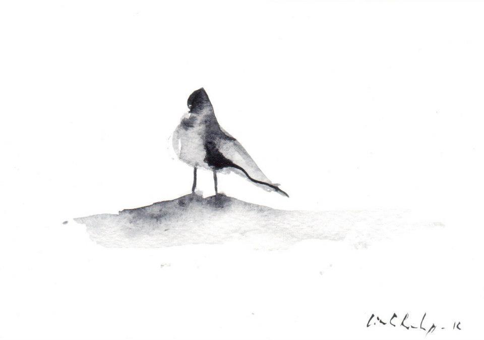 drawings (56)