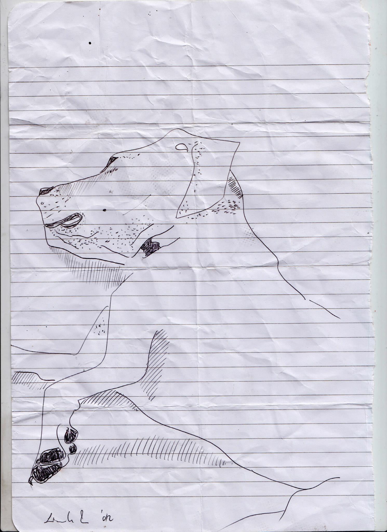 drawings (180)