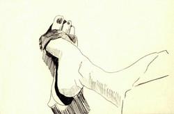 drawings (65)