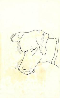 drawings (119)