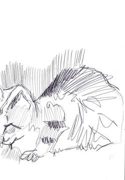 drawings (27)